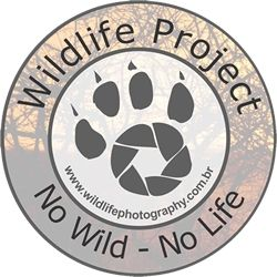 Wildlife Project